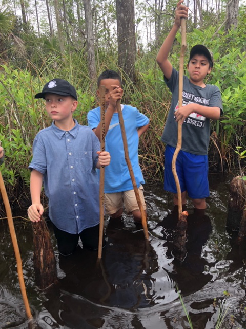 Students exploring Grassy Waters on field trip